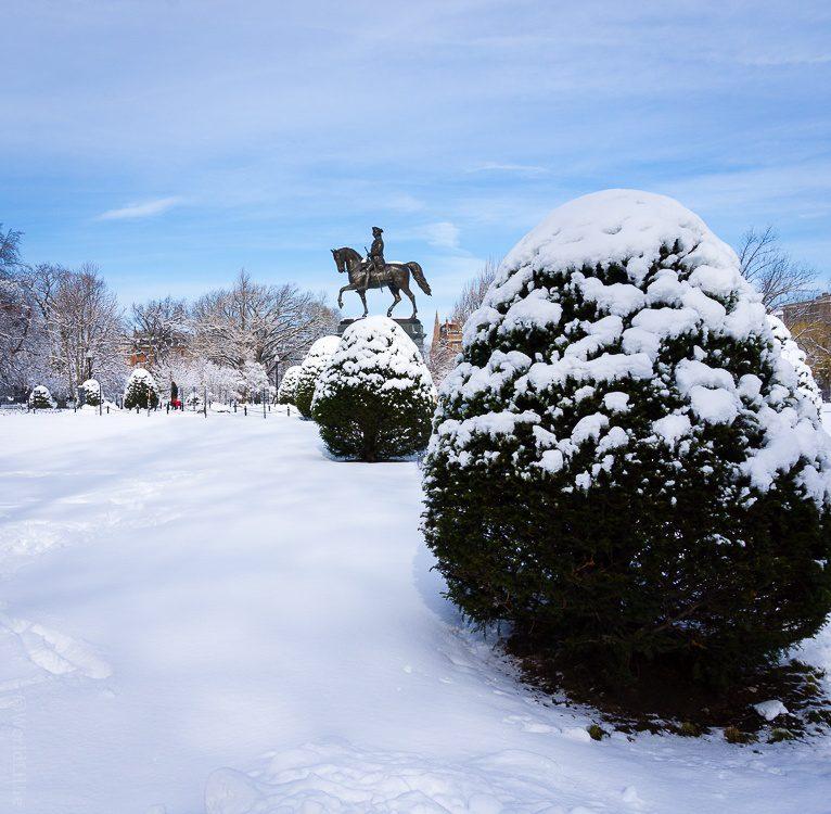 Washington on horseback in the Public Garden.