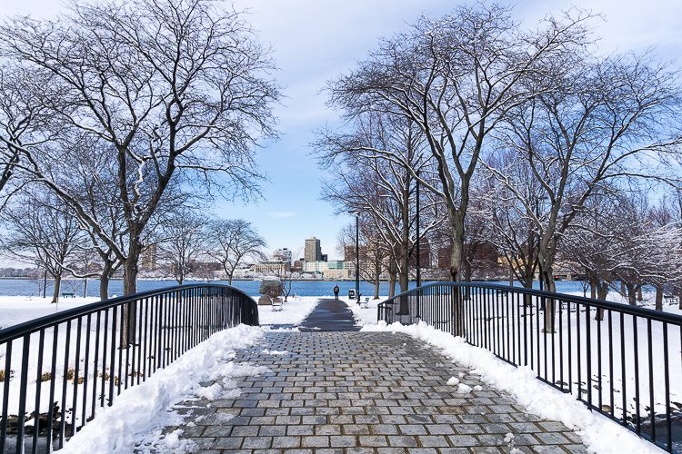 A graceful bridge on the Charles River Esplanade.