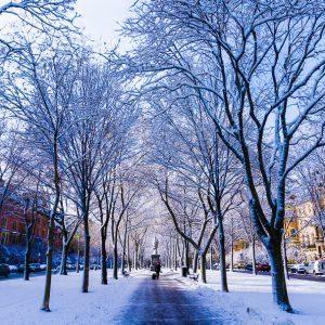 Boston Winter: Beautiful Photos and Travel Advice