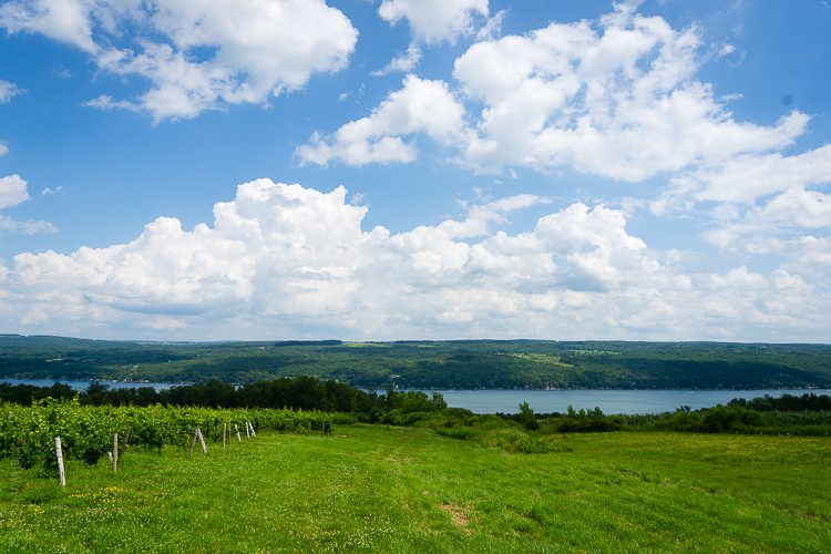 The view from Dr. Frank's vineyard to Keuka Lake. Wow!
