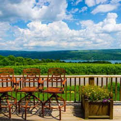 Lovely Vineyards of the Finger Lakes, New York