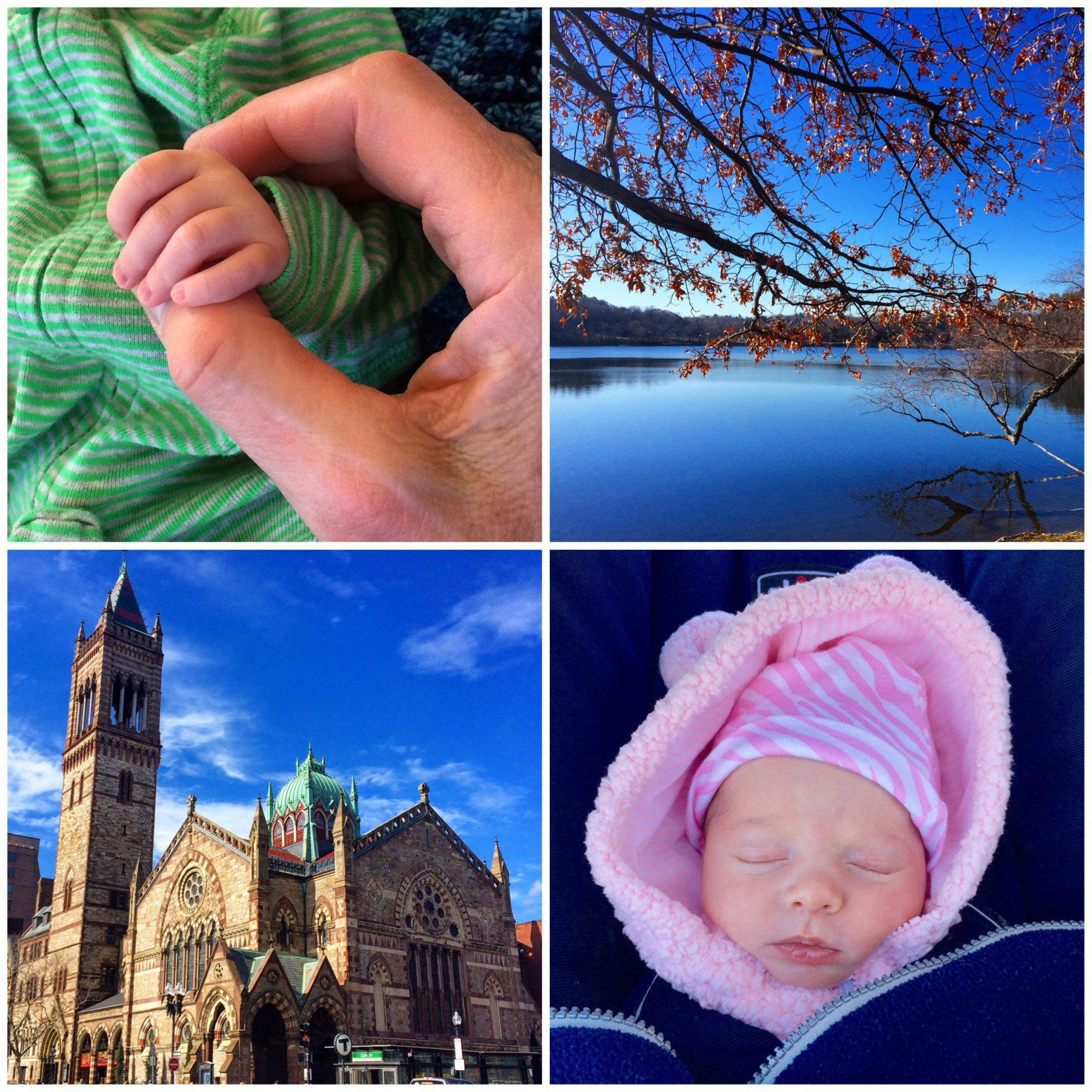 A collage from a day spent walking Boston with baby... and nursing on park benches!