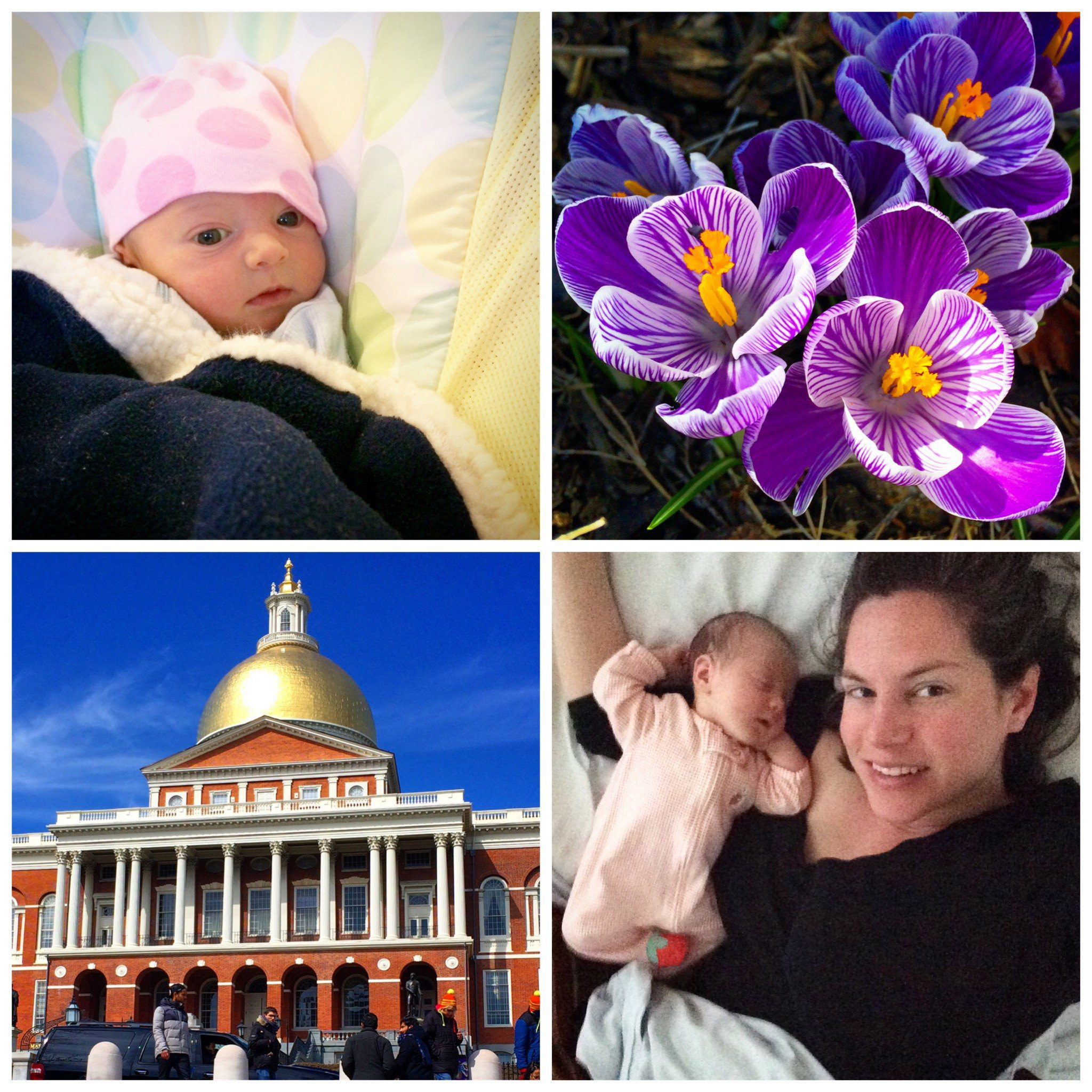 With all that milk, baby is growing like the spring flowers and shining like Boston's golden dome!