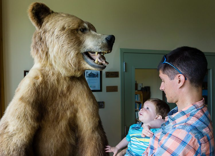 Petting a bear at the Tanglewood Nature Center in Elmira.