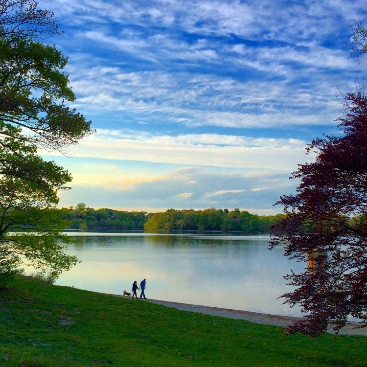 Jamaica Pond, Boston, is free, but still needs money to be maintained!