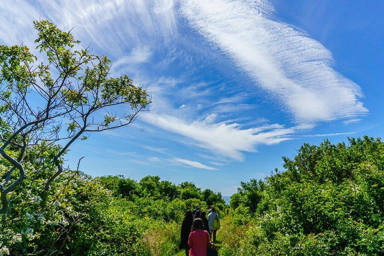 Block Island, RI is a wild beauty!