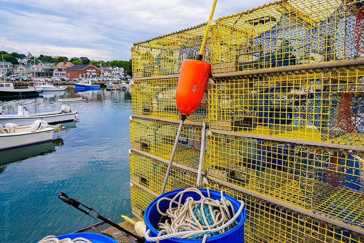 Our lobster was caught in these very traps outside the restaurant!