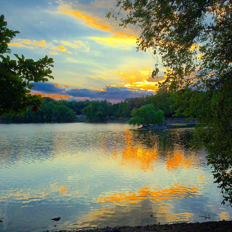 Jamaica Pond is one of the best spots in Boston.