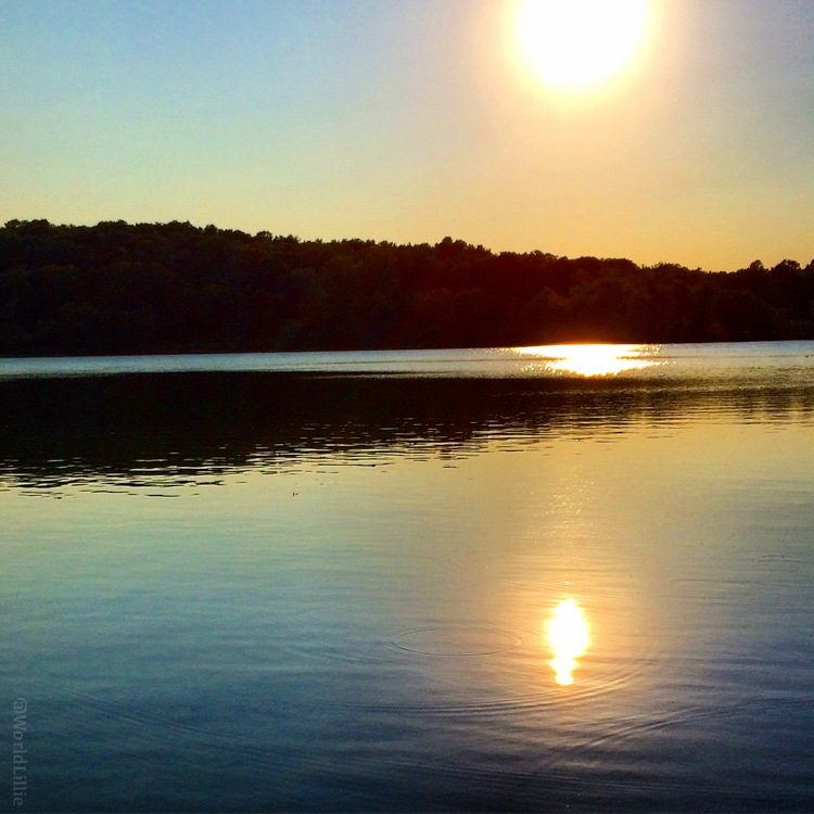 The water in Jamaica Pond can be smooth and reflective as a mirror.