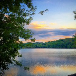 Jamaica Pond: Boston's Best Place Tourists Don't Know