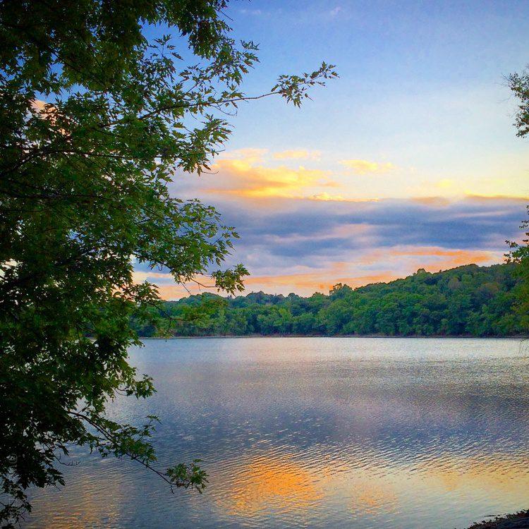 Jamaica Pond sometimes looks like a Monet painting!