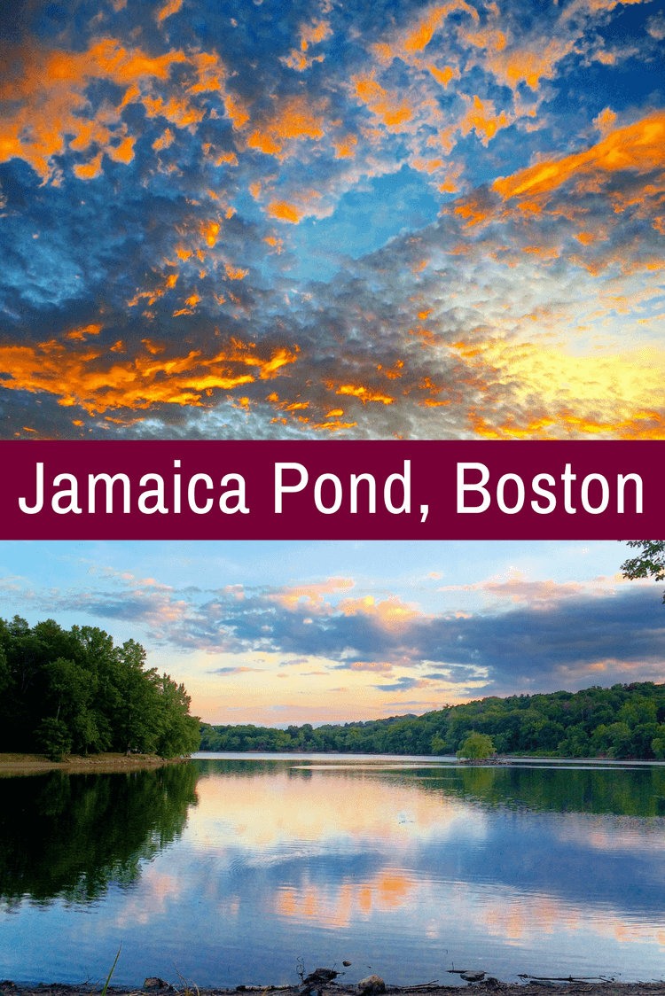 Jamaica Pond is one of the best places to visit in Boston, MA, yet most visitors and tourists don't know it exists!