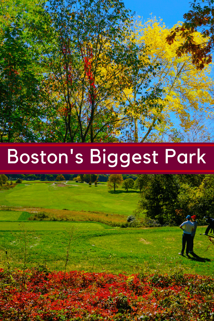 Boston's Biggest Park, Franklin Park, has something for everyone, including a zoo, golf course, and 15 miles of paths for walking, jogging, and biking!
