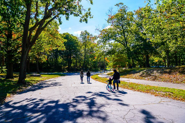 The paved paths of the park are ideal for bikes and strollers.
