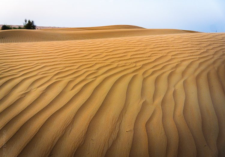 Under everything in the UAE is desert like this!
