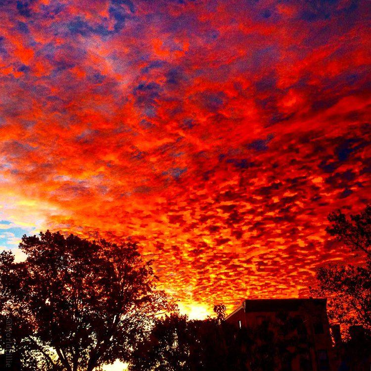 Cool sunrises: A perk of arising at 5am each day to go teach.