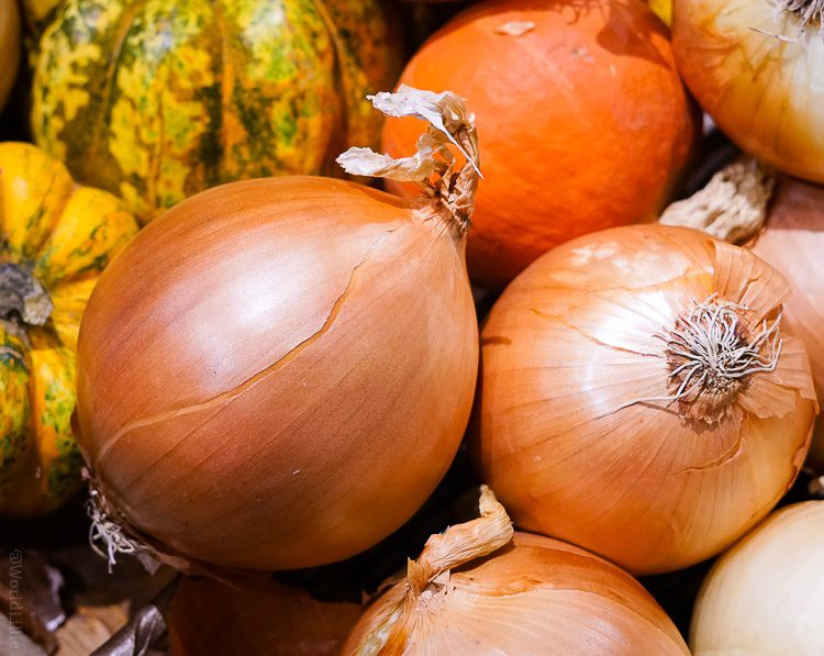 I've never appreciated onions until visiting the market.