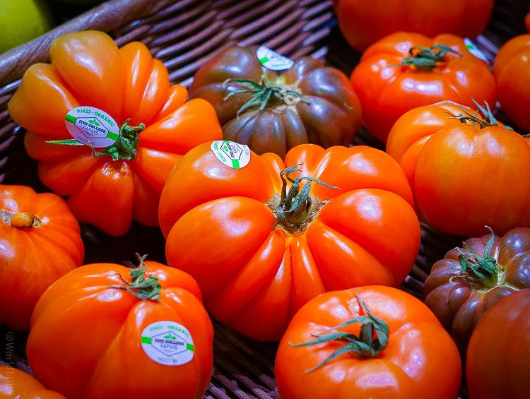 Undulating local tomato grace.