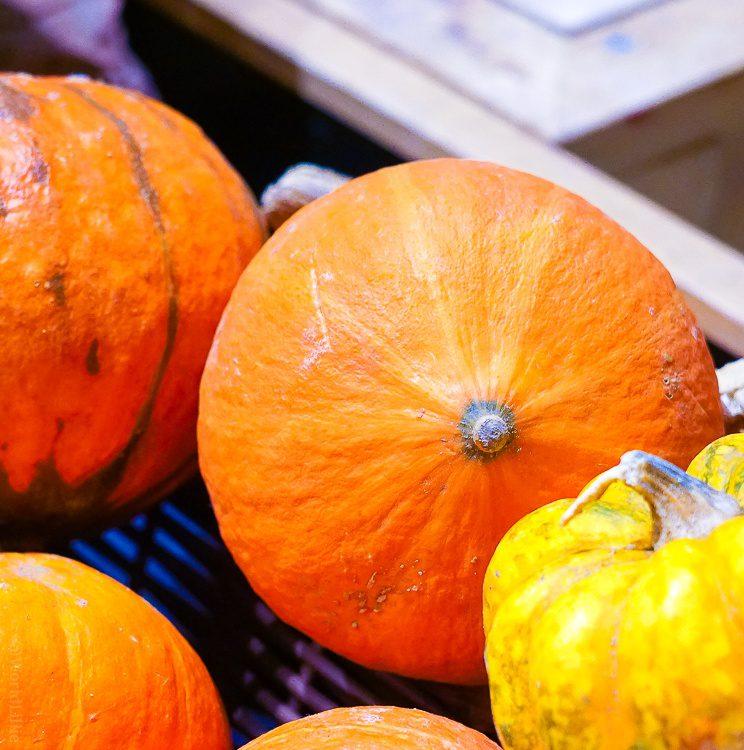 Perfect pumpkin peeking from behind her gourd friend.
