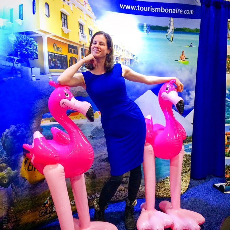 The winning photo for the Bonaire contest. I owe it all to the flamingos for being my... WING-men!