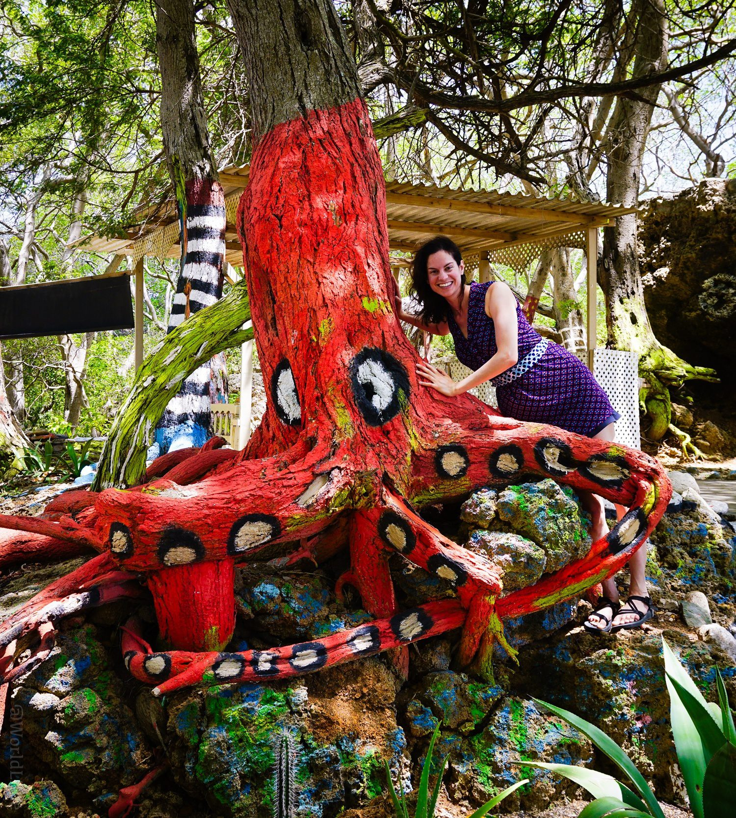 I loved this octopus tree! Curaçao rocks out public art!