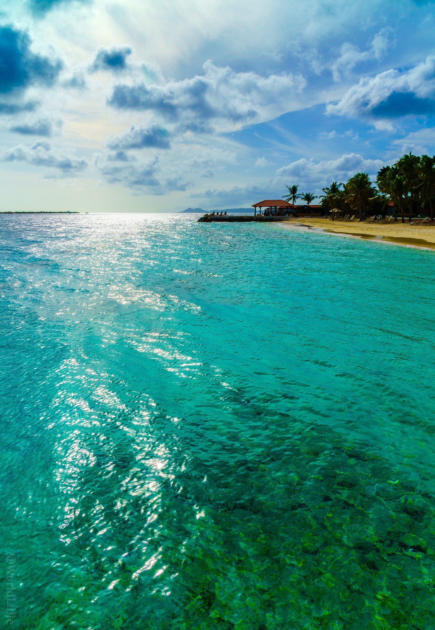 Now that's a beauty of a Caribbean beach. Bonaire is a fascinating island near Aruba that many don't know about.