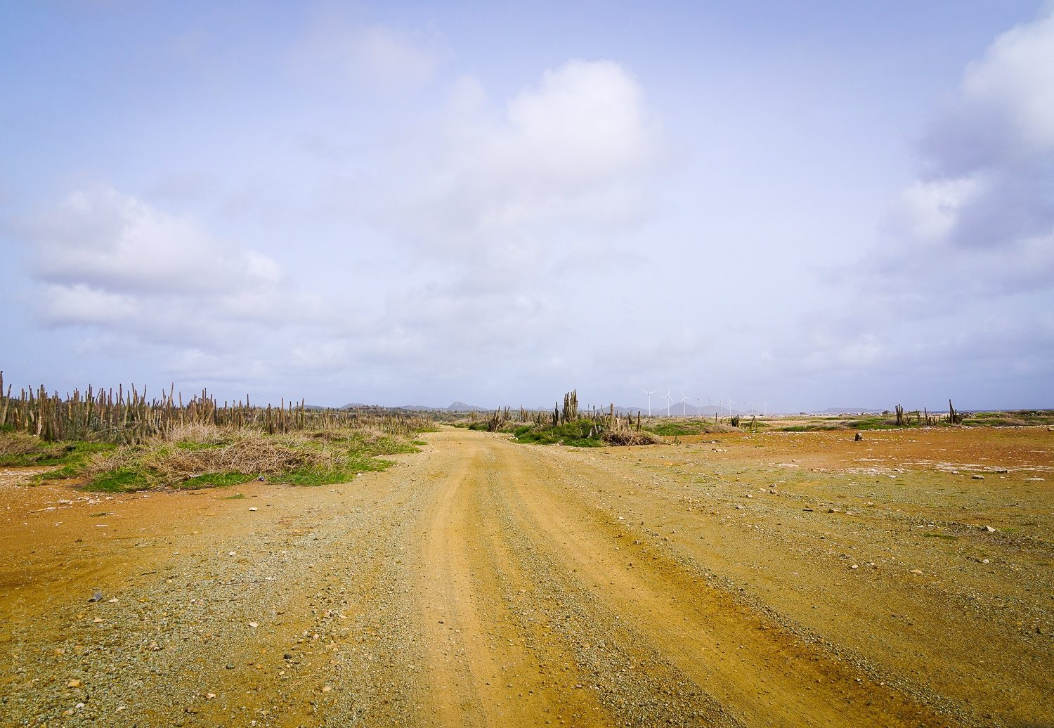 A desert-dramatic road in the north of Bonaire.