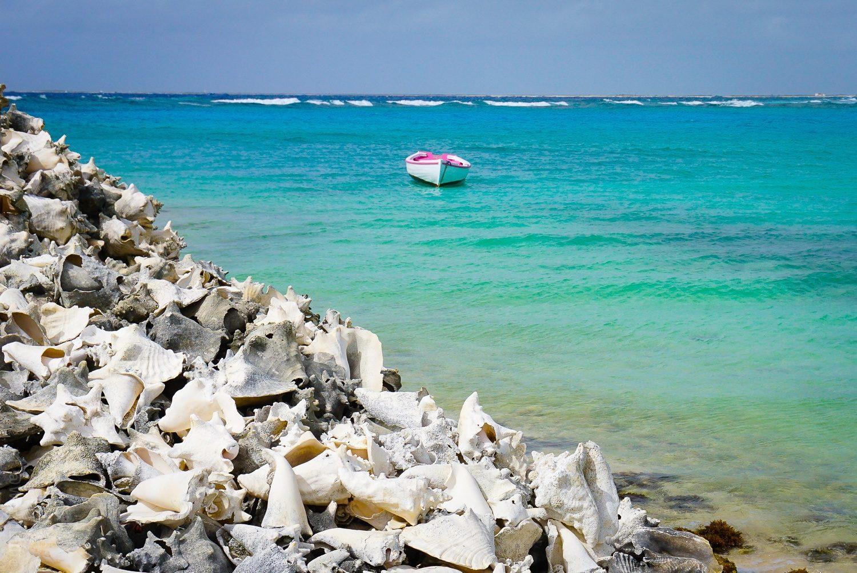 Conch shell mountain next to azure ocean.