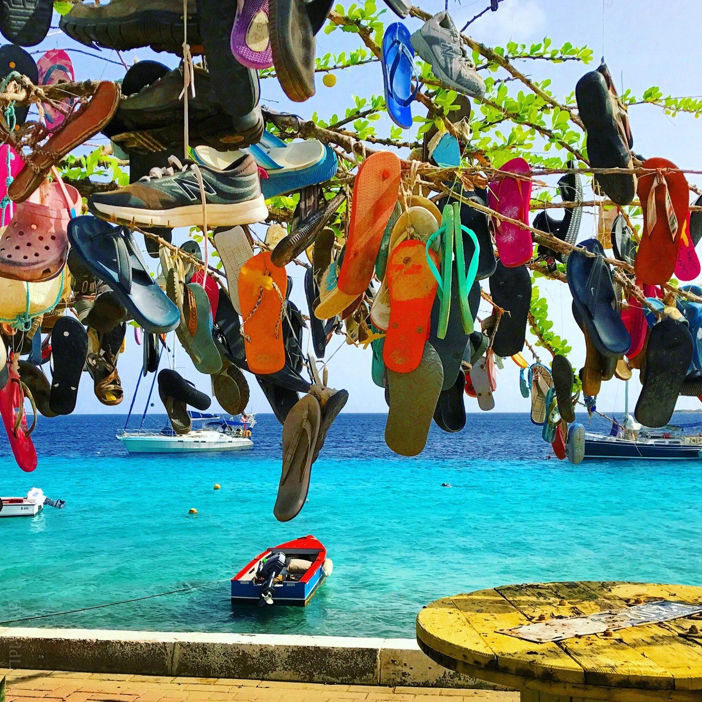 A tree of lost flip flops in Bonaire.