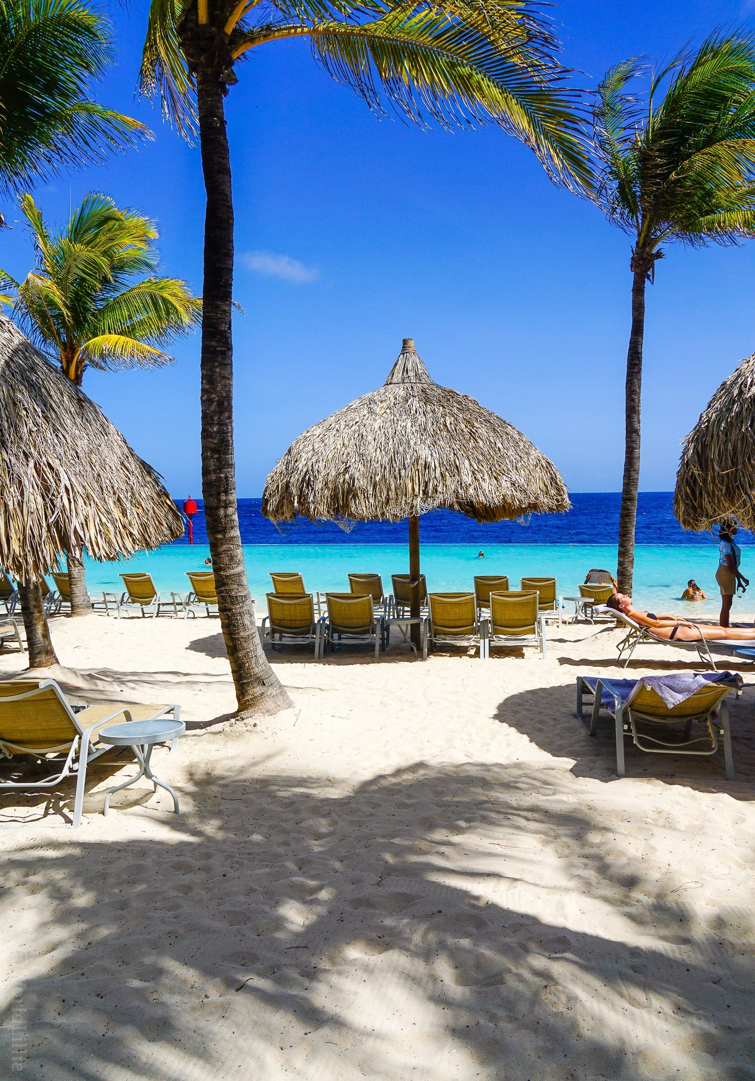 Curacao is an island in the Caribbean that is perfect for vacation travel. Where to stay in Willemstad? Check out this hotel resort with an infinity pool beach!
