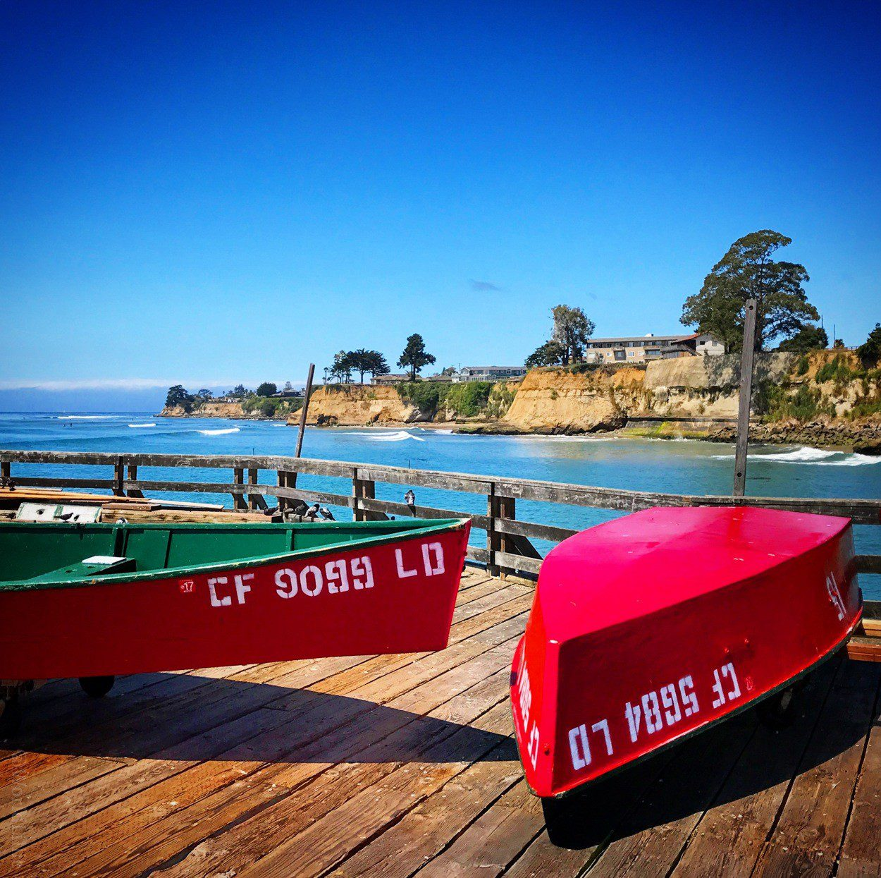 On a family trip to Santa Cruz, California this summer.