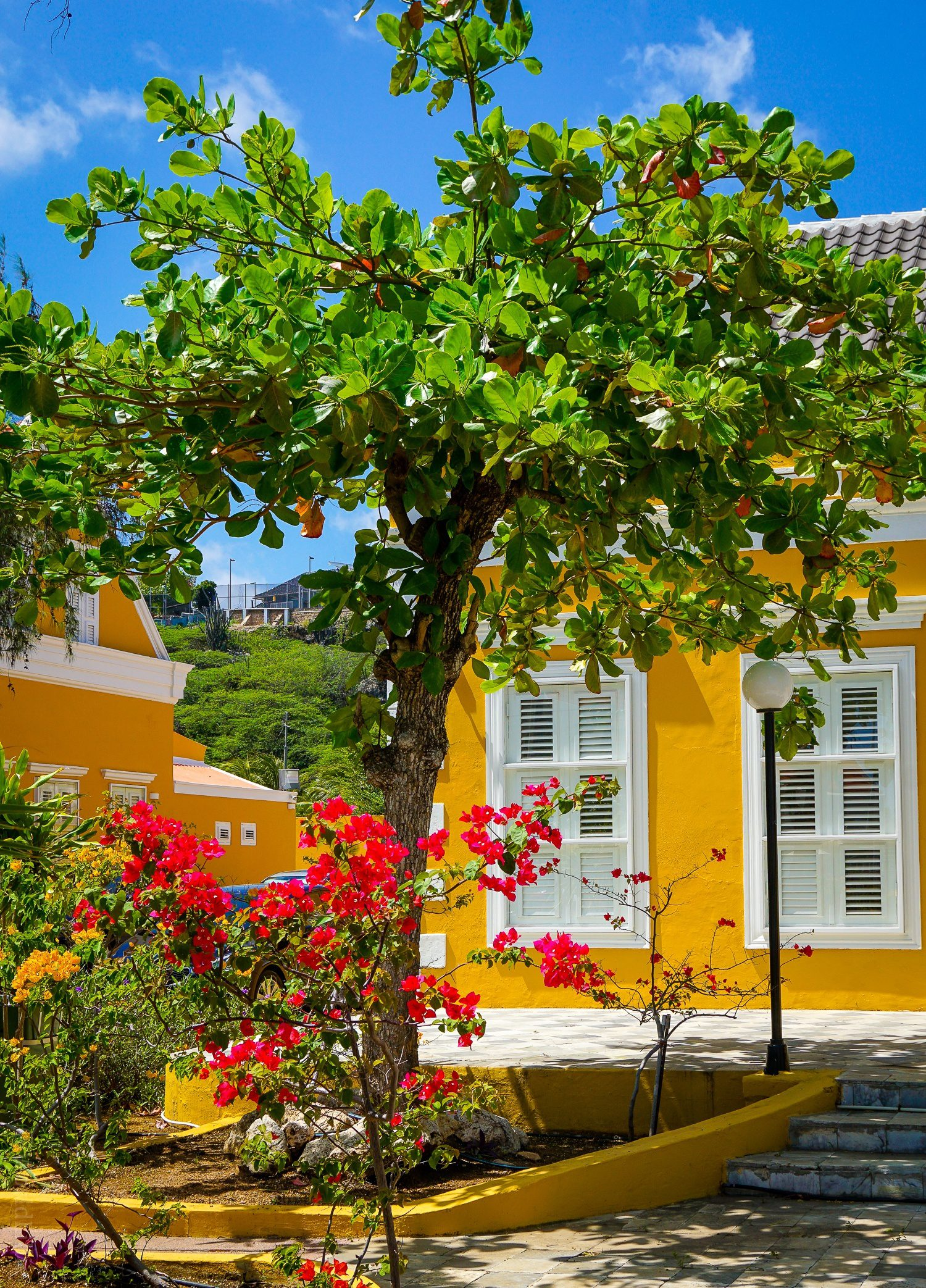 Willemstad, Curaçao has great architecture, and the Scharloo neighborhood features historic mansions that look like brightly-colored wedding cakes! See these happy, fun buildings here.