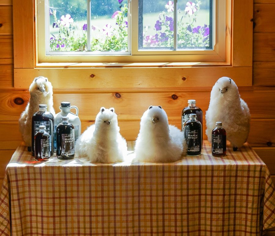 Want to buy some syrup or fuzzy dolls?
