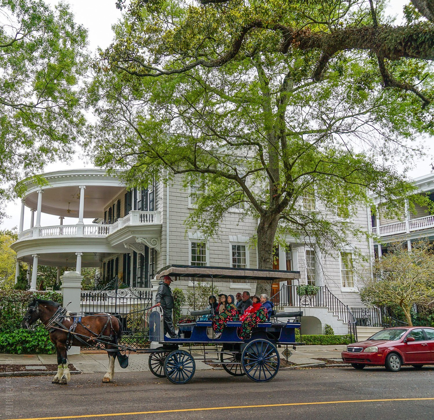 Horse-drawn carriage is one of the best ways to see Charleston.