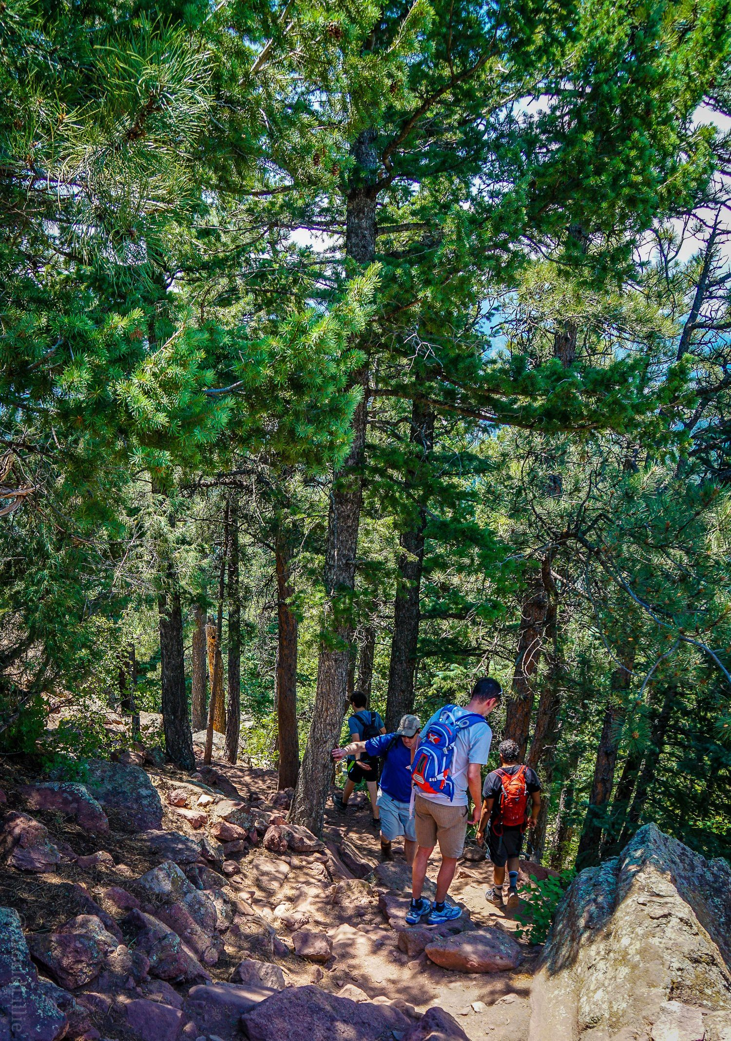 Green Mountain West Ridge Trail, Boulder, CO