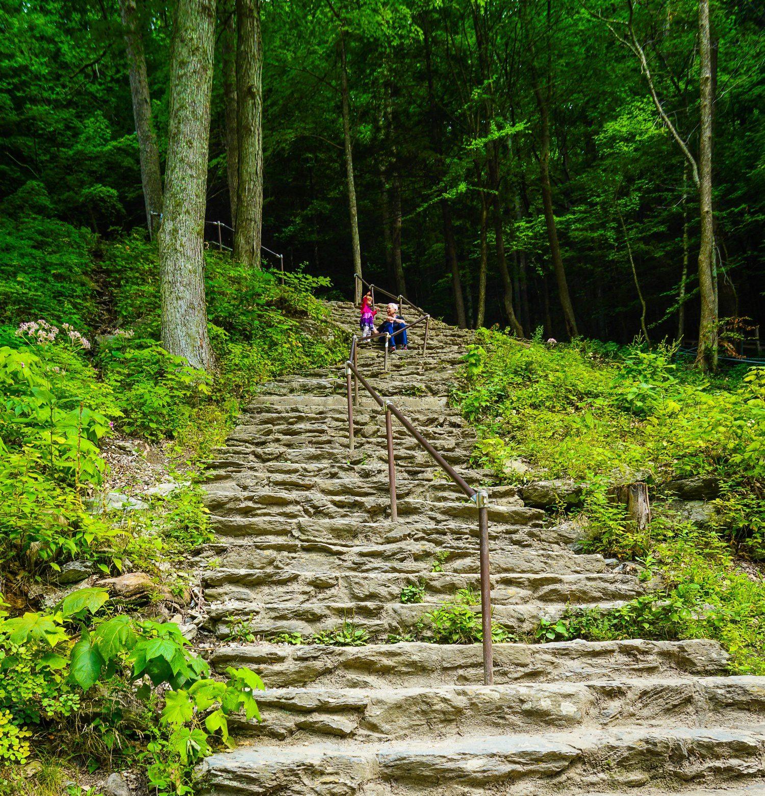 Stairs to Bash Bish Falls.