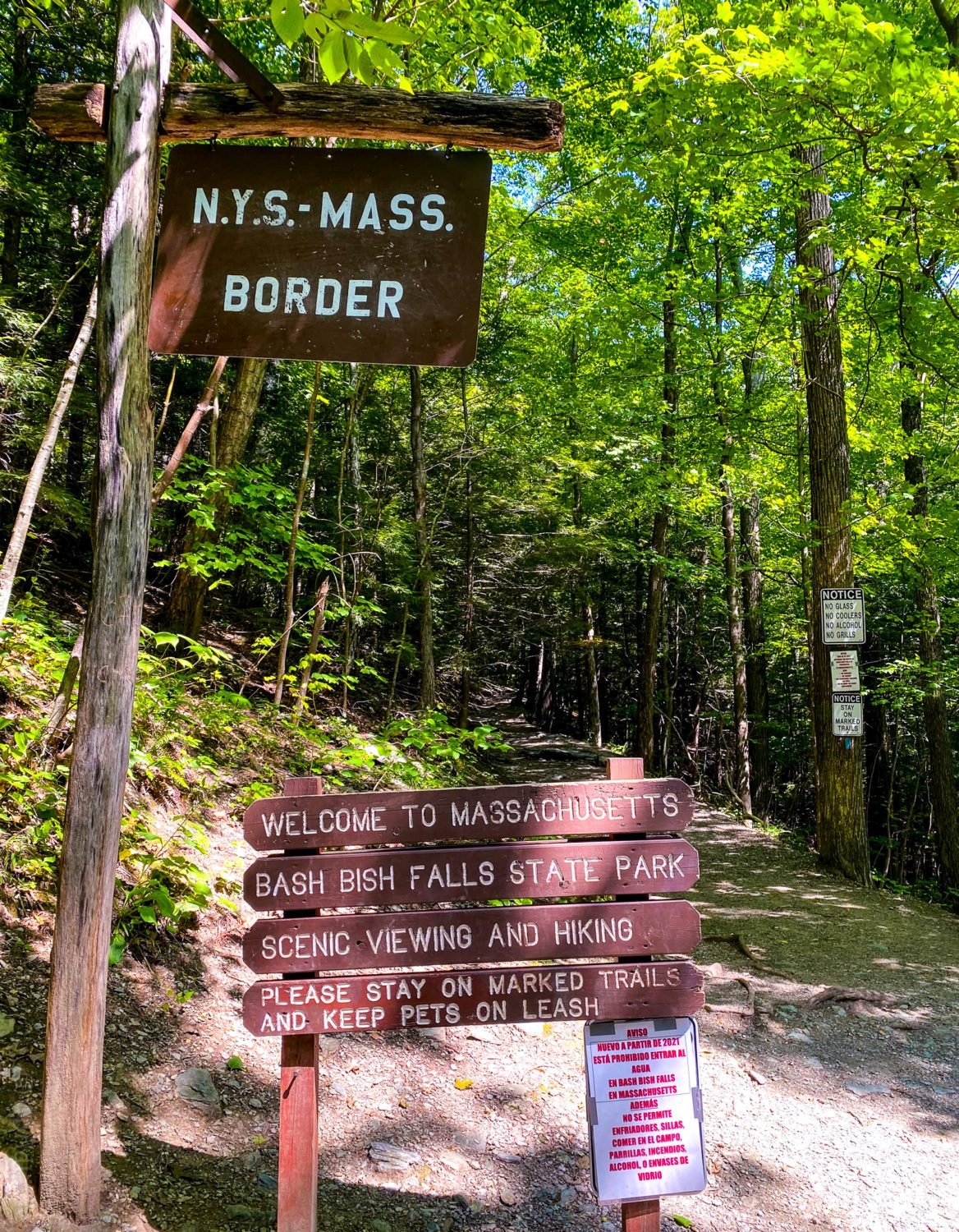 You'll walk across the NY-MA border on the Taconic State Park trail.