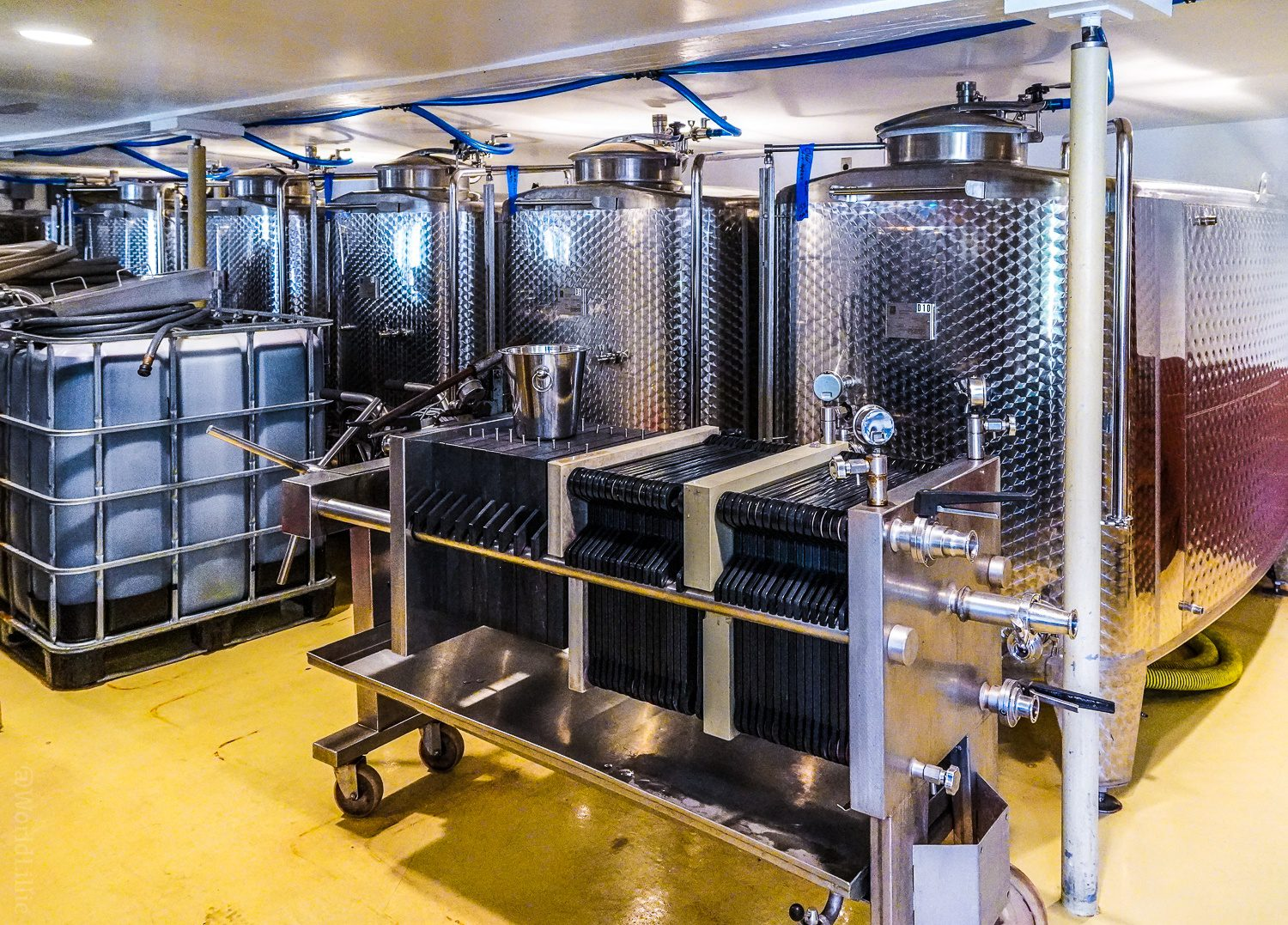 Making wine with stainless steel tanks