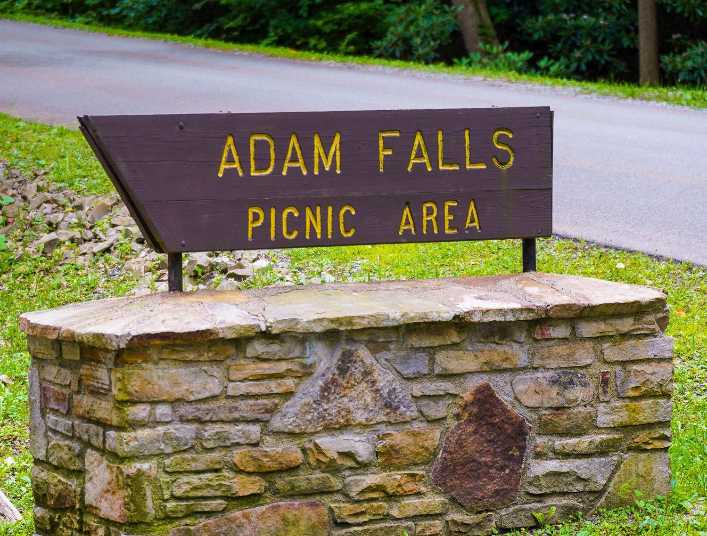 Adam Falls Linn Run State Park PA