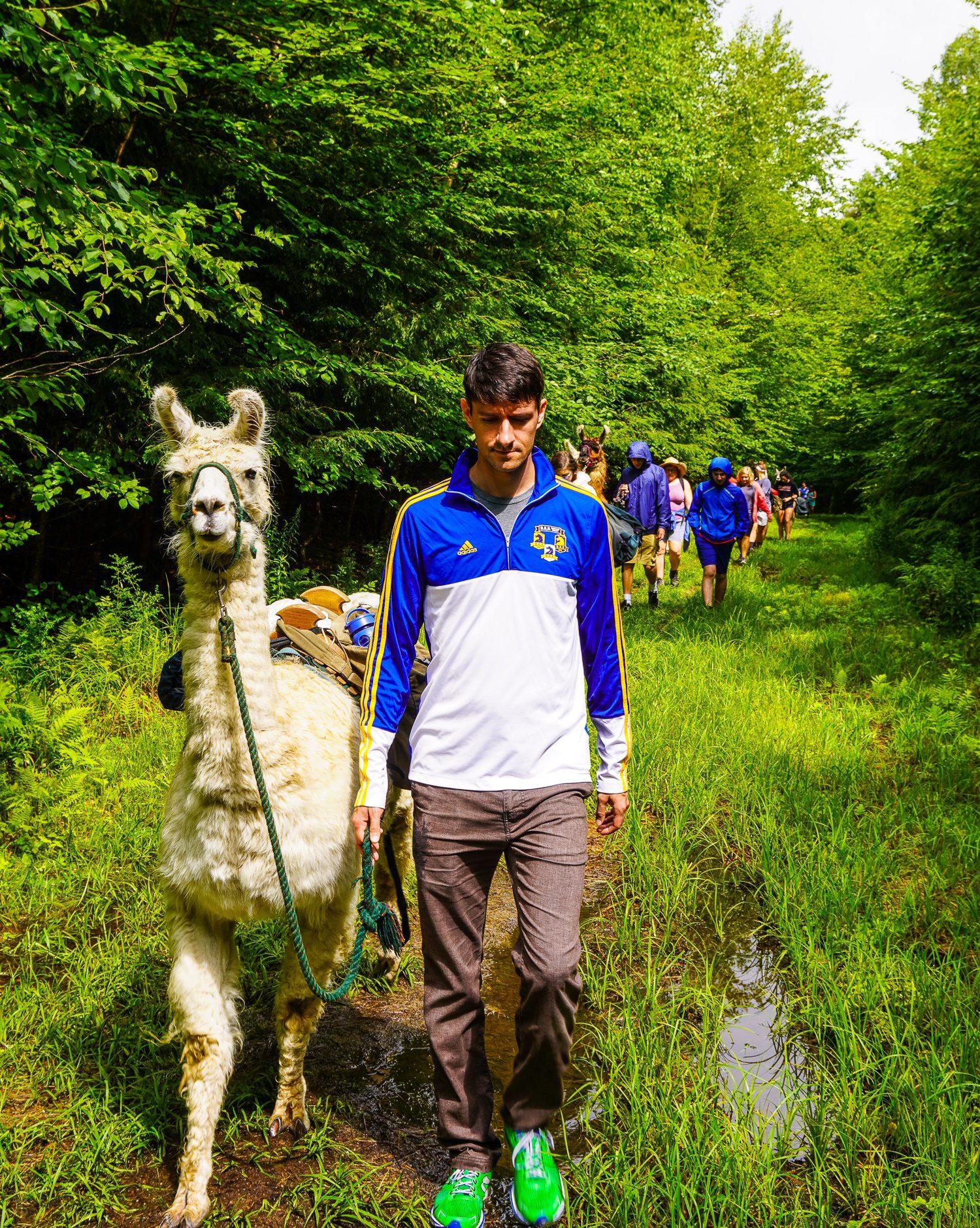 The llama trek begins in Vermont. Nervous?
