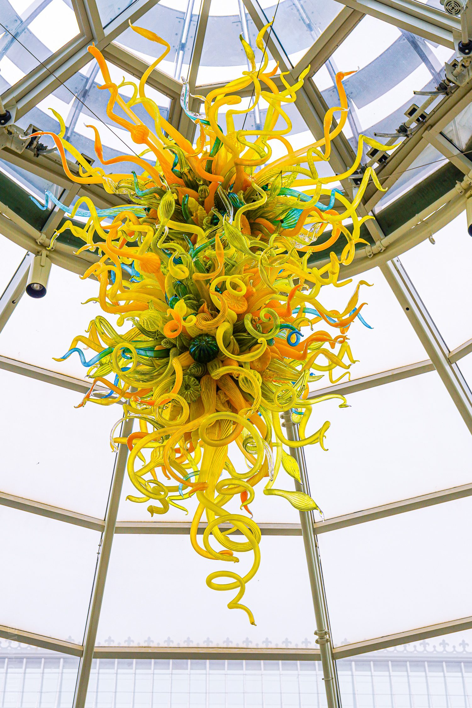A Chihuly glass chandelier in the atrium.