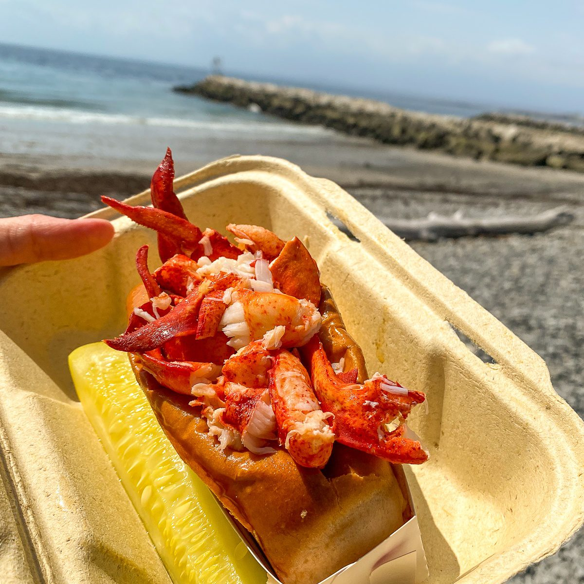 Eating lobster rolls outside in Kennebunkport, Maine.